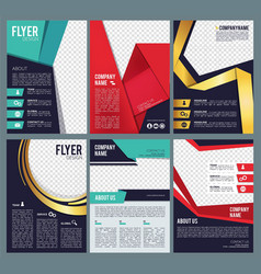 editable flyers business brochure layout template vector image