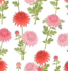 elegant seamless texture with chrysanthemums vector image