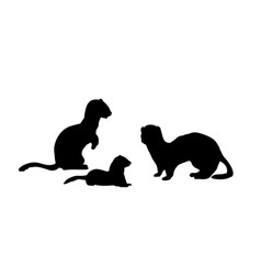 Ferrets family silhouettes animals vector