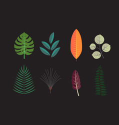 forest tree leaves collection icons vector image
