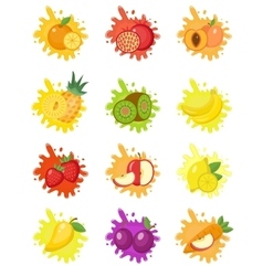 Fruits splash set of labels Fruit splashes drops vector image