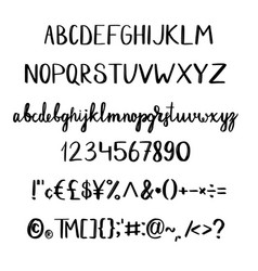 hand drawn typeface vector image