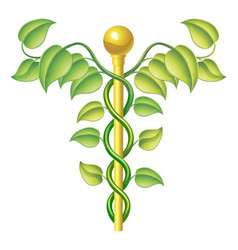 Natural caduceus concept vector