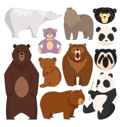Different style bears vector image vector image