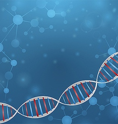 DNA chain vector image