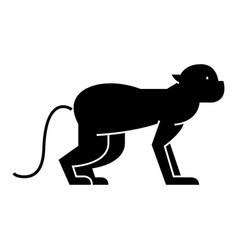 monkey icon sign on isolate vector image vector image