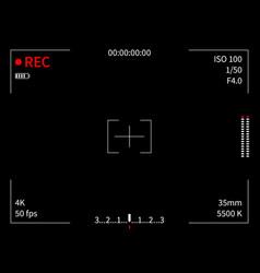 Camera display viewfinder recording focusing vector