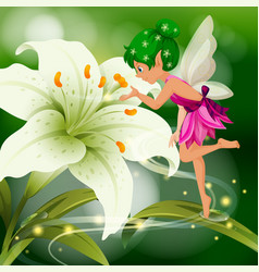 Cute fairy flying around white lily vector