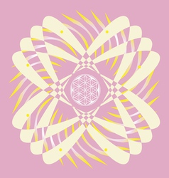 Flower of life seed pink mandala vector