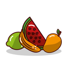 Fruit watermelon banana mango and lemon vector