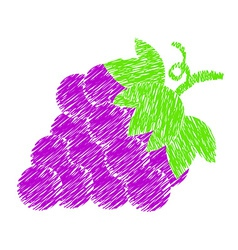 Grapes paint drawing vector