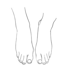 hand drawn women foot vector image