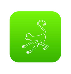 playful monkey icon green vector image