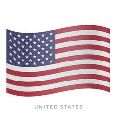 united states waving flag icon vector image