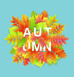 autumn background banner design with leaves vector image