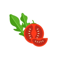 Cherry Tomato vector image