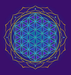 Color mandala sacred geometry vector