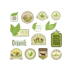 Eco badge organic food vector