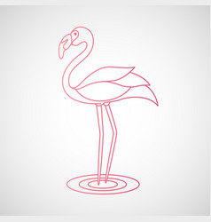 Flamingo logo vector
