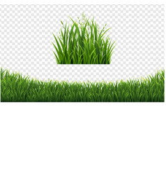 Green grass frame set in isolated white background vector