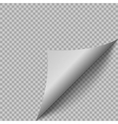 Paper page with shadow vector