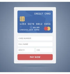 Payment application form with credit card vector