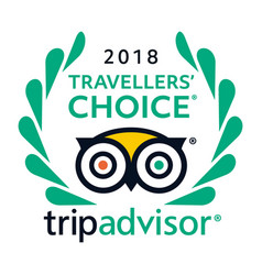 2018 travellers choice tripadvisor logo icon vector image