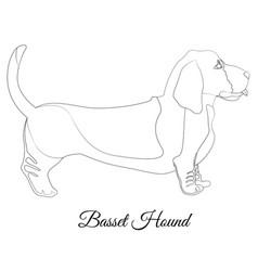 Basset hound dog breed outline vector