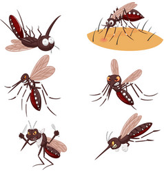 cartoon mosquito collection set vector image