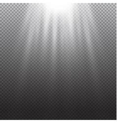 Light effect Rays burst light on transpare vector image