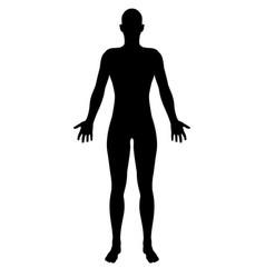 stylized unisex human figure silhouette vector image