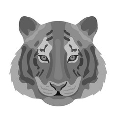 tiger icon in monochrome style isolated on white vector image