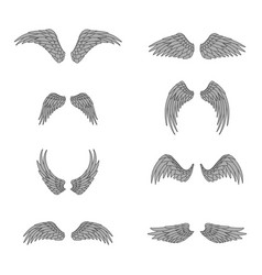 Wings bird lineart isolated animal angel fly set vector