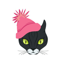 beautiful black cat head in pink knitted hat vector image
