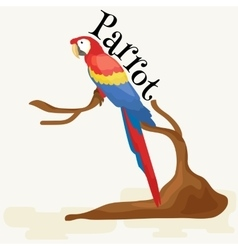 Domestic animal isolated macaw parrot with beak vector image