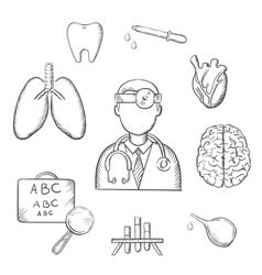 Human organs and medical sketch icons vector image vector image