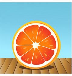 summer grapefruit vector image vector image