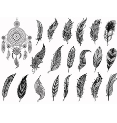 Dream catcher and feathers vector image