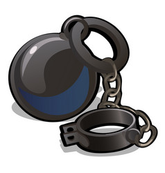 Steel shackles chained to the weight isolated on vector