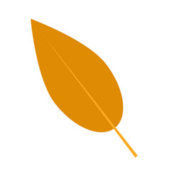 willow autumn leaf icon flat style vector image