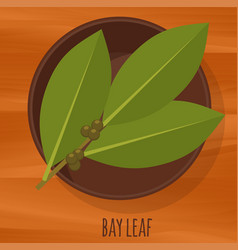 Bay leaf flat design icon vector