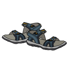Blue sport sandals vector