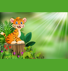 cartoon happy tiger sitting on tree stump with gre vector image