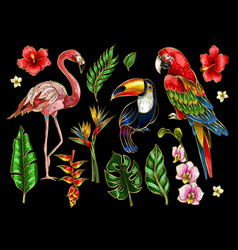 Parrot toucan flamingo and flowers embroidery vector