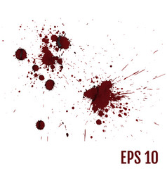 Set of various blood or paint splatters all vector