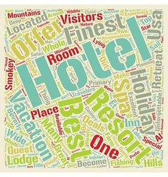 The Best Five Hotels Of USA text background vector image vector image