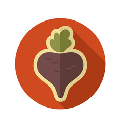 beet flat icon vegetable vector image vector image