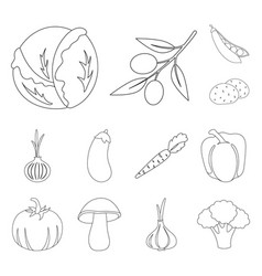 different kinds of vegetables outline icons in set vector image