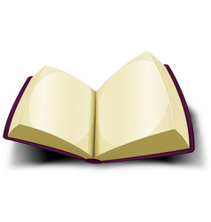 Opened big book icon with blank pages vector