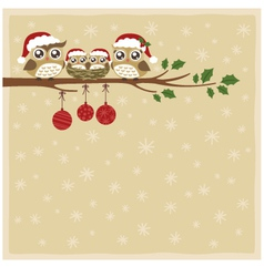 owl christmas celebration vector image